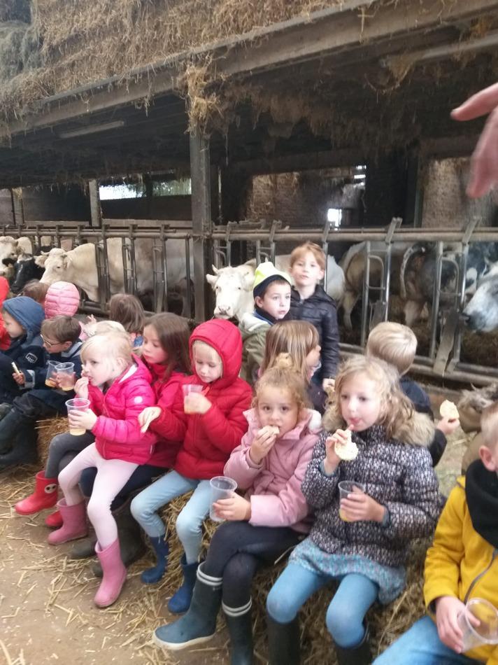 Au programme il y avait la visite des animaux mais surtout le travail de la laine de mouton et la fabrication d'1 bon pain maison...😋